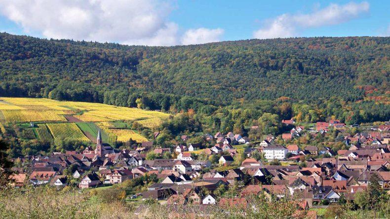 Typische Landschaft im Elsass