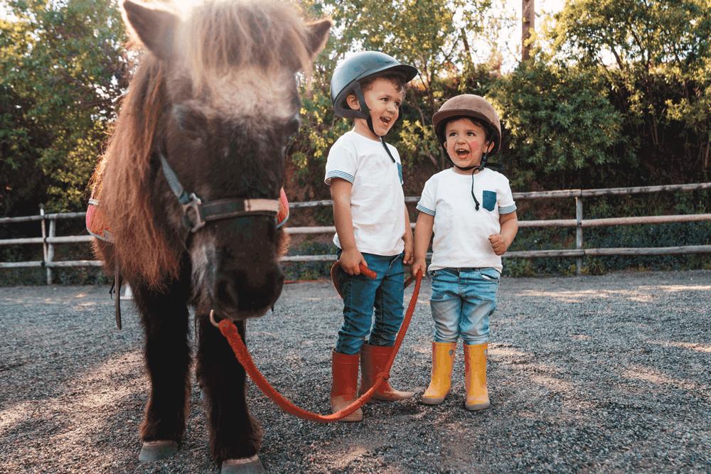 Die West Virginia City Ranch bietet dir und den Kids Cowboy-Feeling in familiärer Atmosphäre