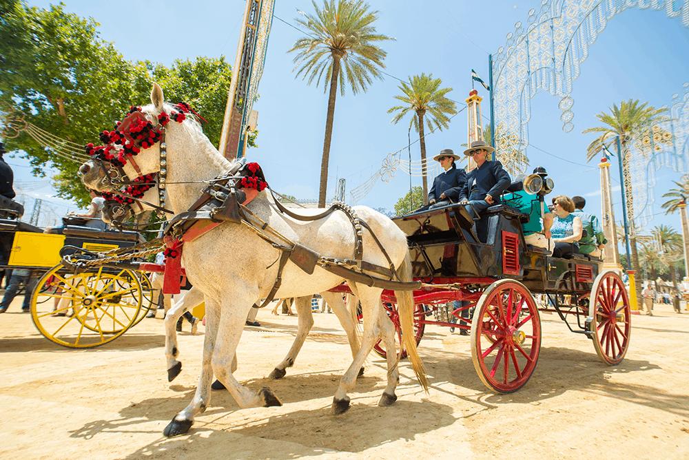 Jerez de la Frontera ist für seine Königlich-Andalusische Reitschule weltbekannt