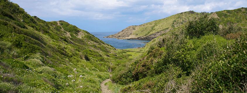 Der Camí de Cavalls auf Menorca ist ein historischer Reiterpfad und ein landschaftlich facettenreicher Fernwanderweg entlang der Küste