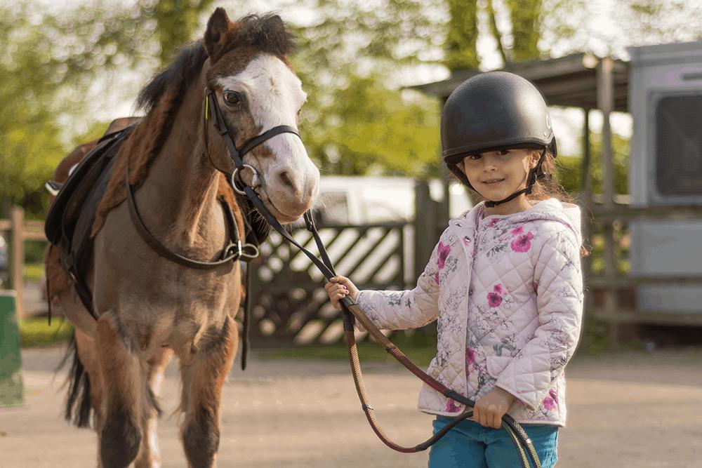 Wer die Wahl hat, hat die Qual. Auf Mallorca gibt es viele Pferdehöfe für kleine und große Pferdeliebhaber
