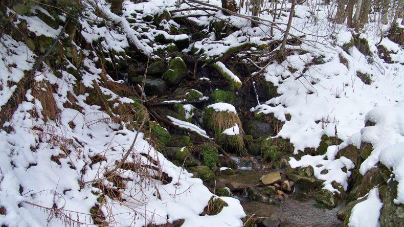Winter im Elsass