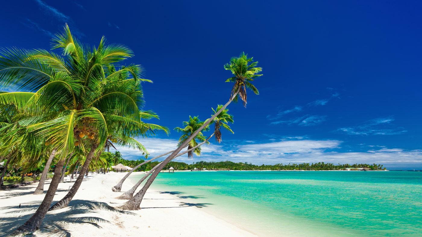 So wie man sich die Fidschi Inseln vorstellt sind sie auch in der Realität: einfach traumhaft!