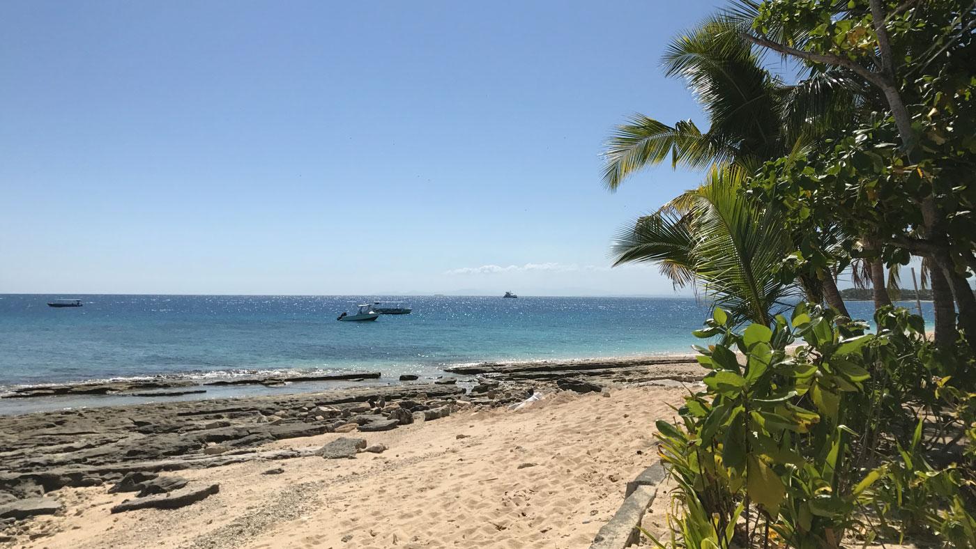 Der Strand von Beachcomber Island