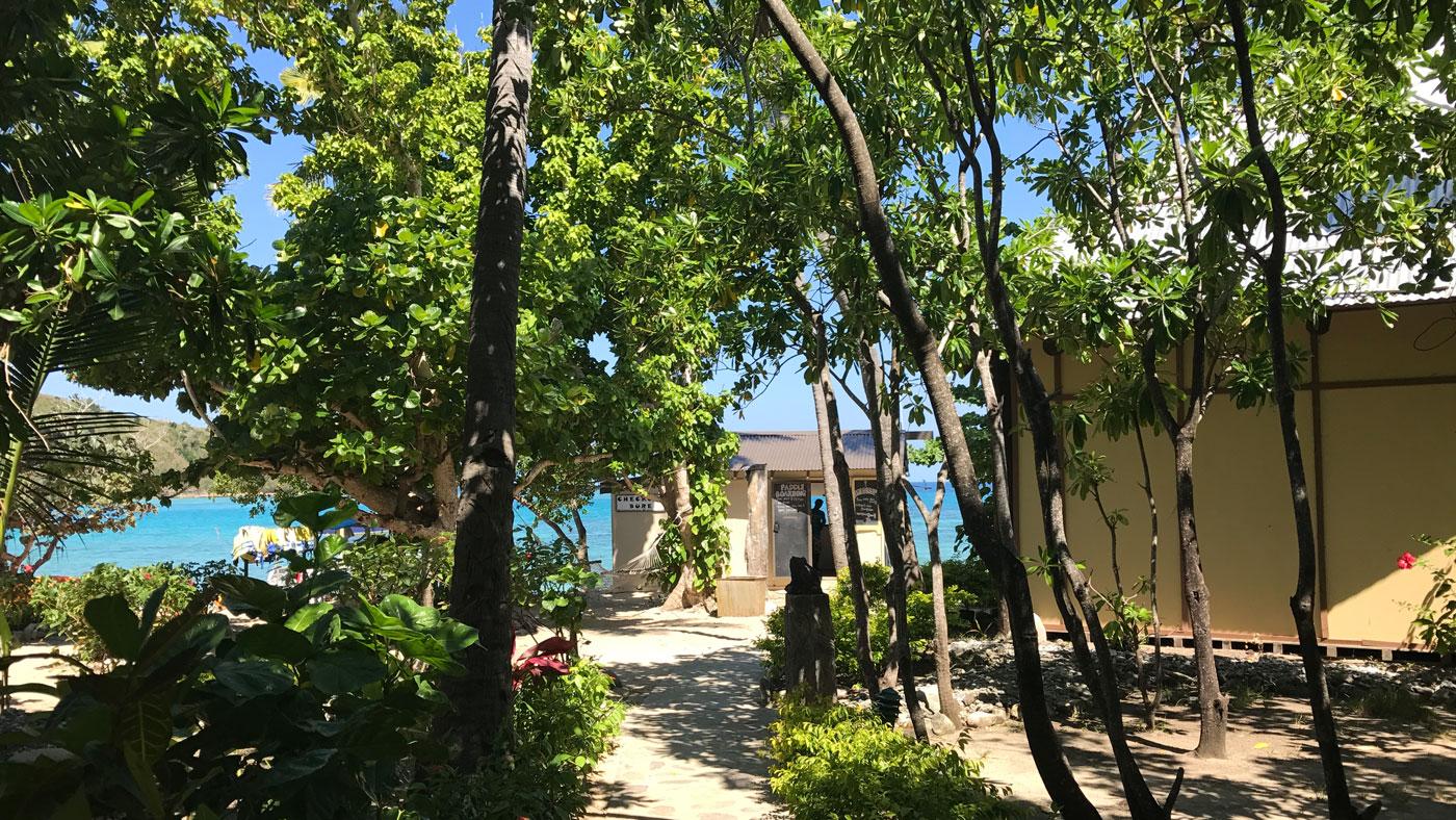 Es grünt so schön! Auf dem Weg zum Strand von Nanuya Balavu Island
