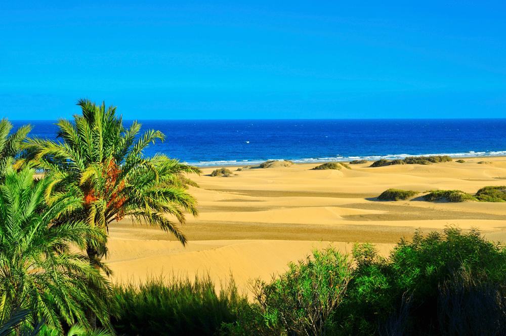 Empfehlenswert sind außerdem die Strände von Maspalomas an der Südspitze Gran Canarias, da diese mit ihrem einzigartigen Dünenpanorama den faszinierten Blick nicht nur Richtung Meer ziehen. Dazu verraten wir euch später mehr.
