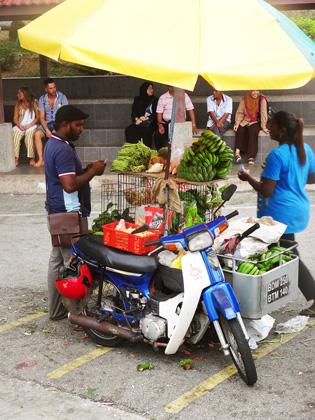 Vor Ort wir das Futter für die Affen von Einheimischen verkauft.