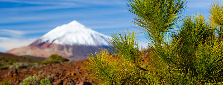 Der Pico del Teide ist mit seinen 3715 Metern die höchste Erhebung auf der Kanareninsel Teneriffa