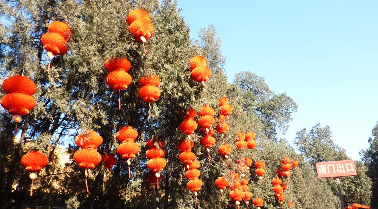 Zum Laternenfestival in China