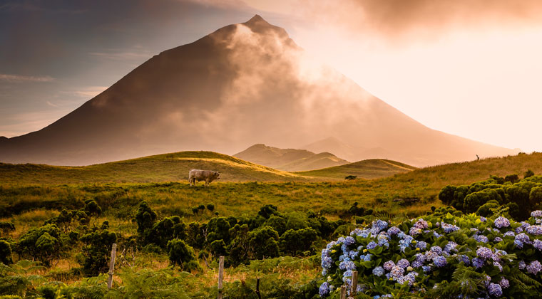 Pico Azoren Inseln