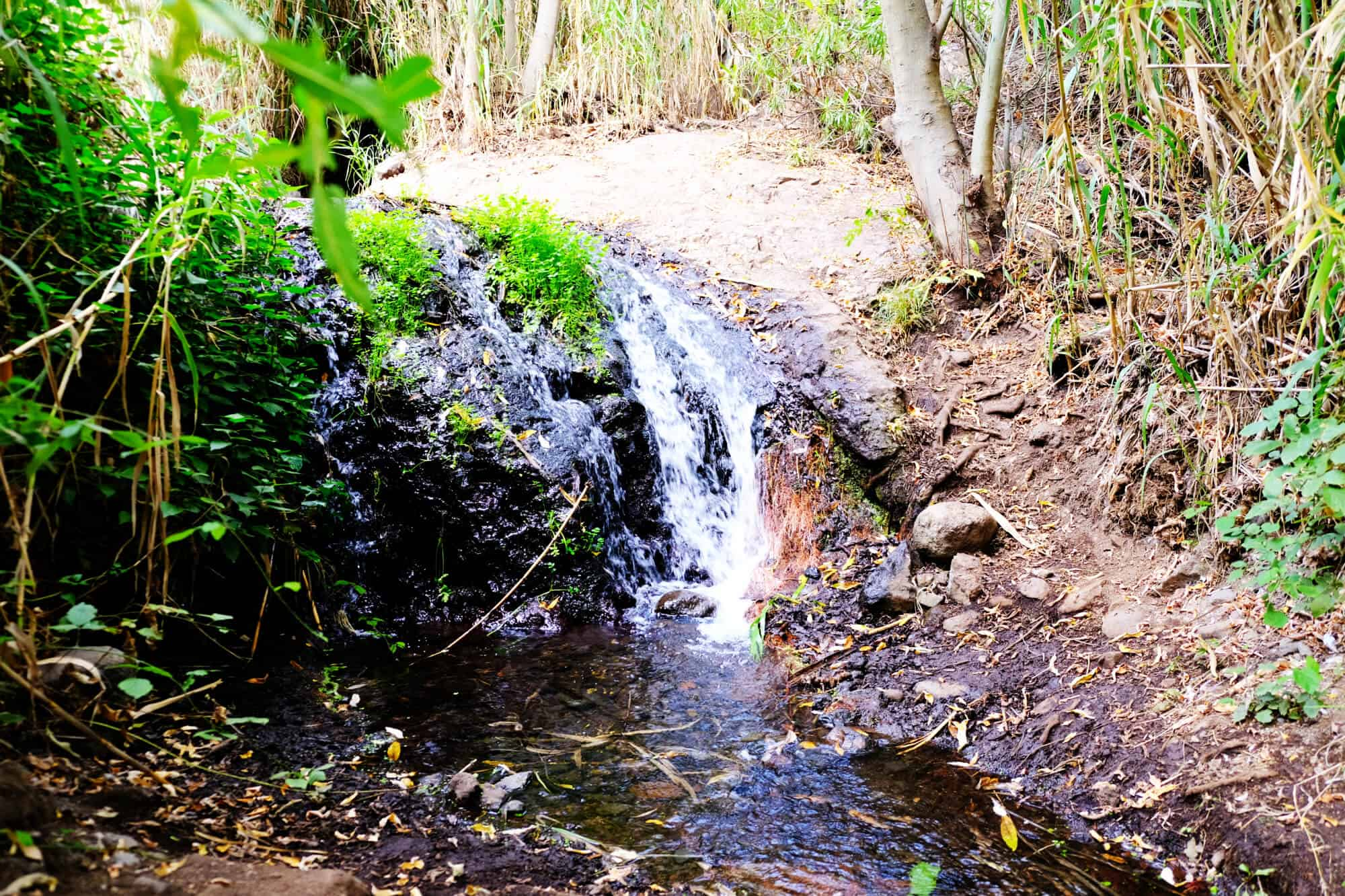 Wanderweg zu den Wasserfällen