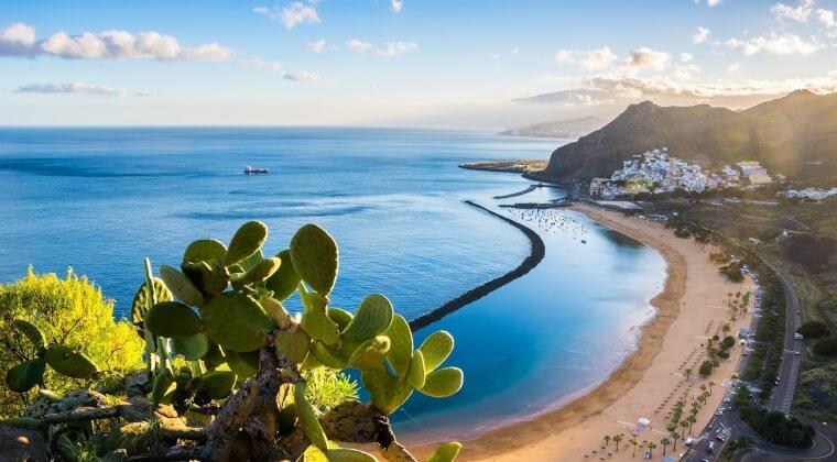 Blick auf den Strand Las Teresitas in Santa Cruz auf Tenreiffa mit Kakteen im Vordergrund