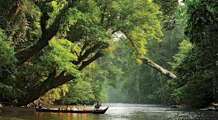 Lata Berkoh im Taman Negara Nationalpark