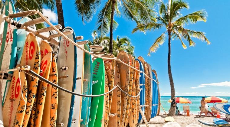 Surfbretter am Strand mit Palmen und Meer im Hintergrund