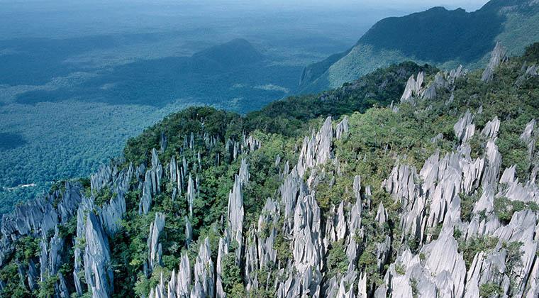 Karstlandschaft im Gunung Mulu Nationalpark