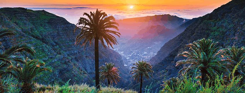 Einzigartige Flora und Fauna auf Gran Canaria.