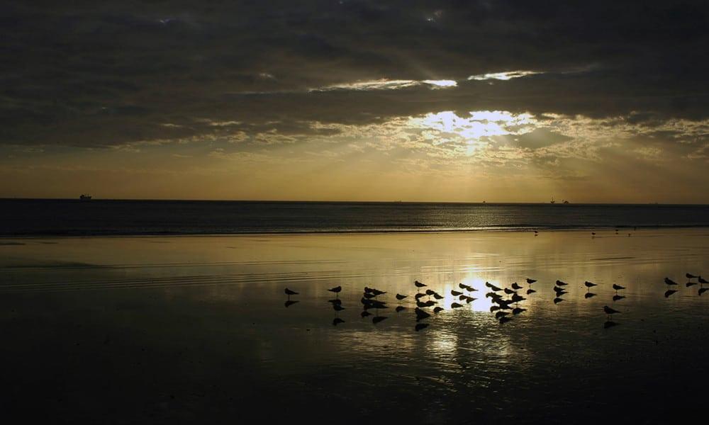 Der Playa Doñana
