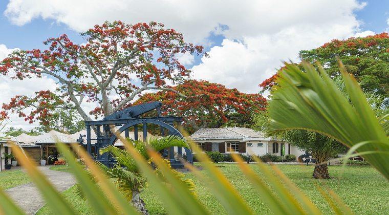 Mauritius Zuckerherstellung