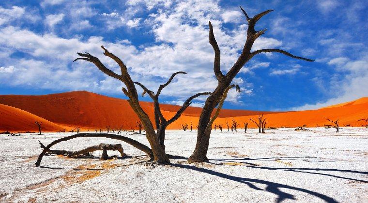 Der See Dead Vlei Namibia