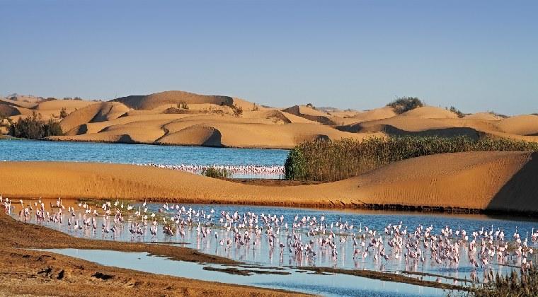 Walvis Bay und die Namib Wüste