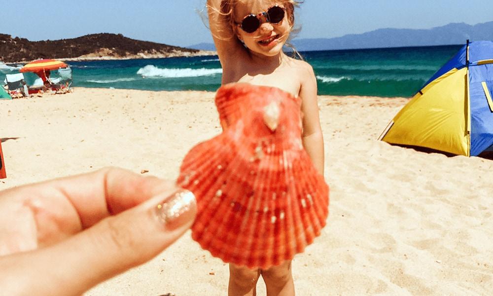 Besonders für Kinder eine schöne Bastelei: Muschelbilder.