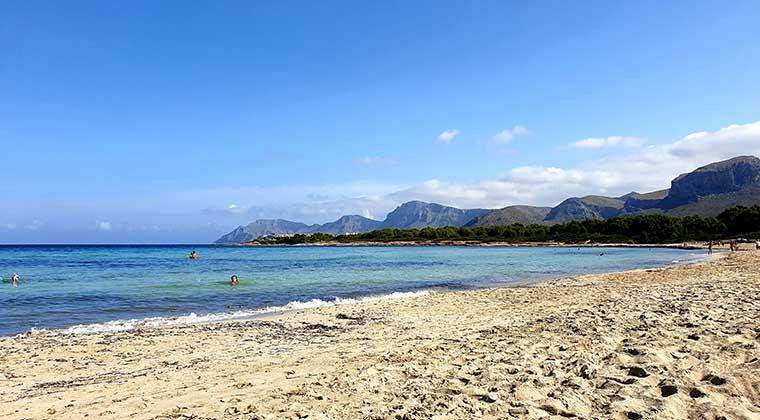 Sa Canova Playa