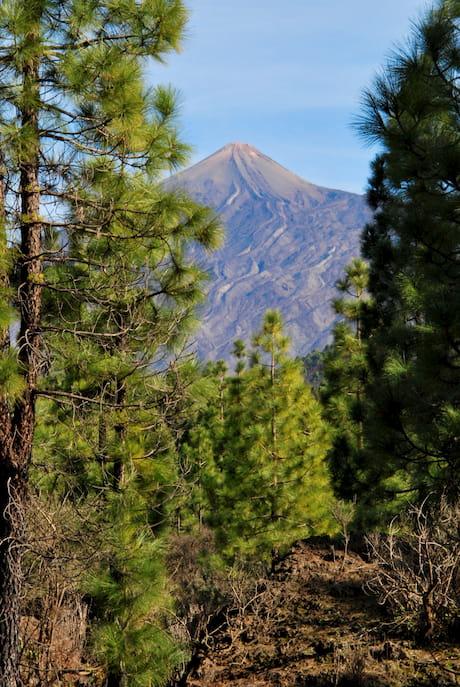 Blick auf den Teide