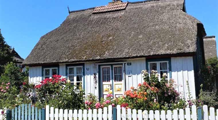 Typisches Haus mit Reet in Born am Darß