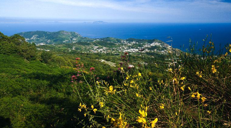 Mount Epomeo Insel Ischia