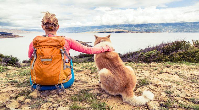 Wandern mit Hund in eurem Urlaub in Kroatien mit Hund