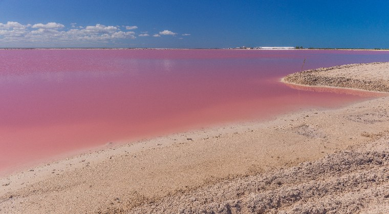 Mexiko Yucatan rosafarbene Lagune Las Coloradas