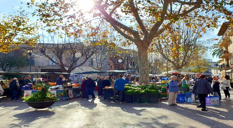 Markt Alcudia