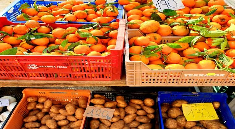 Orangen Markt Mallorca