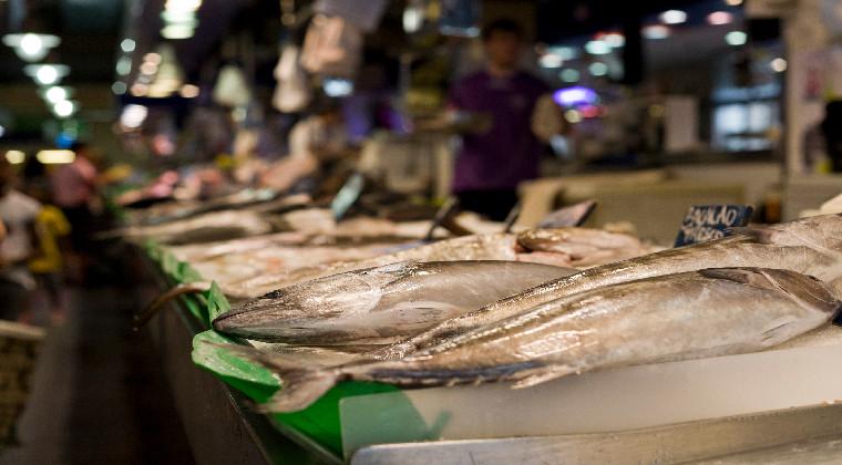 Die Markthalle in Palma de Mallorca frischer Fisch