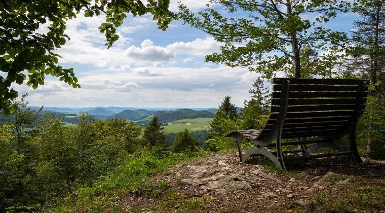 Panoramasicht Winterberg