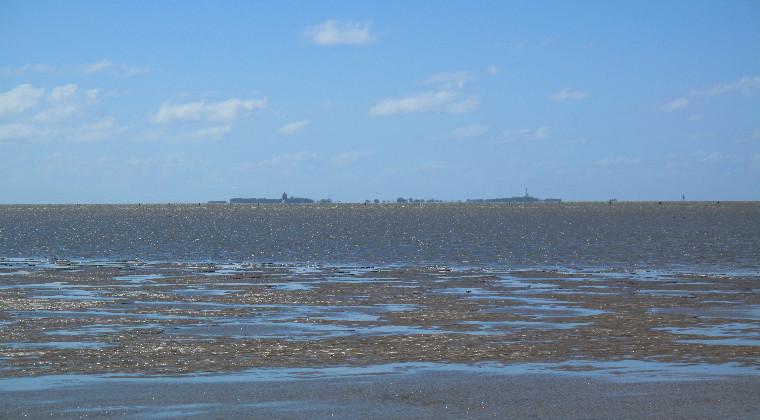 Wattenmeer Insel Neuwerk Nordsee