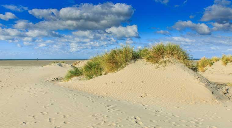 Strand bei IJmuiden