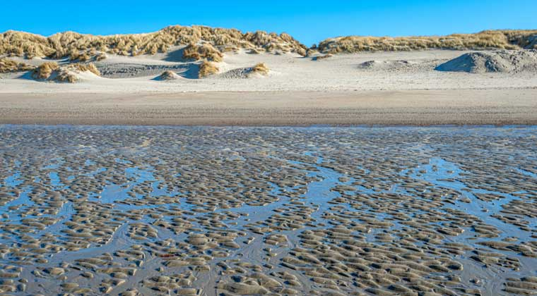 Strand auf Schouwen Duiveland