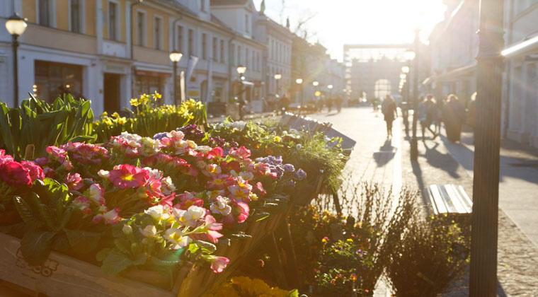 Kurzurlaub Potsdam Spaziergang über die Brandenburger Straße