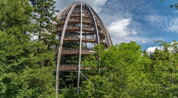 Baumturm in Bayern