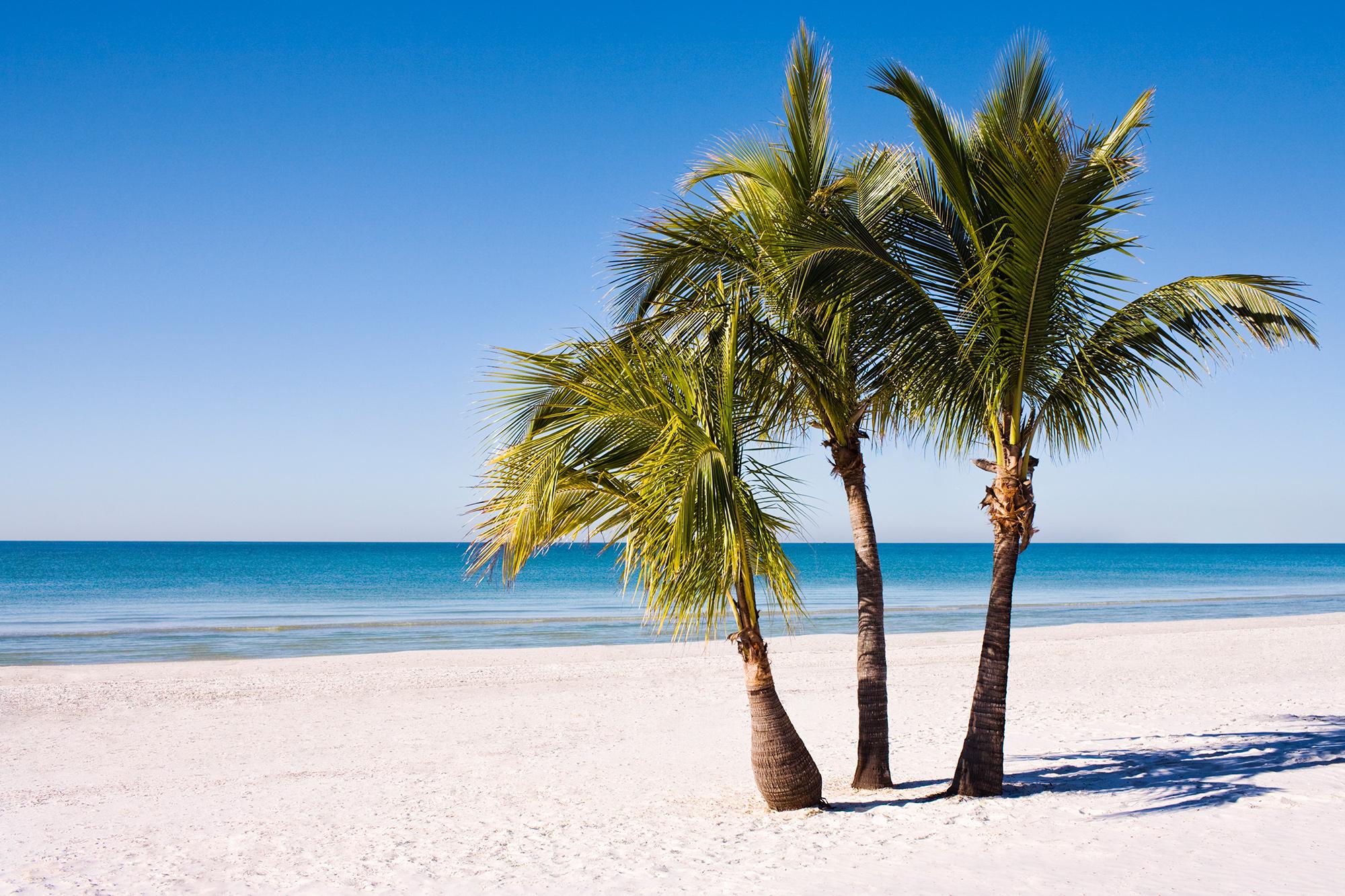 last minute karibik strandurlaub in der karibik mit tui. Black Bedroom Furniture Sets. Home Design Ideas