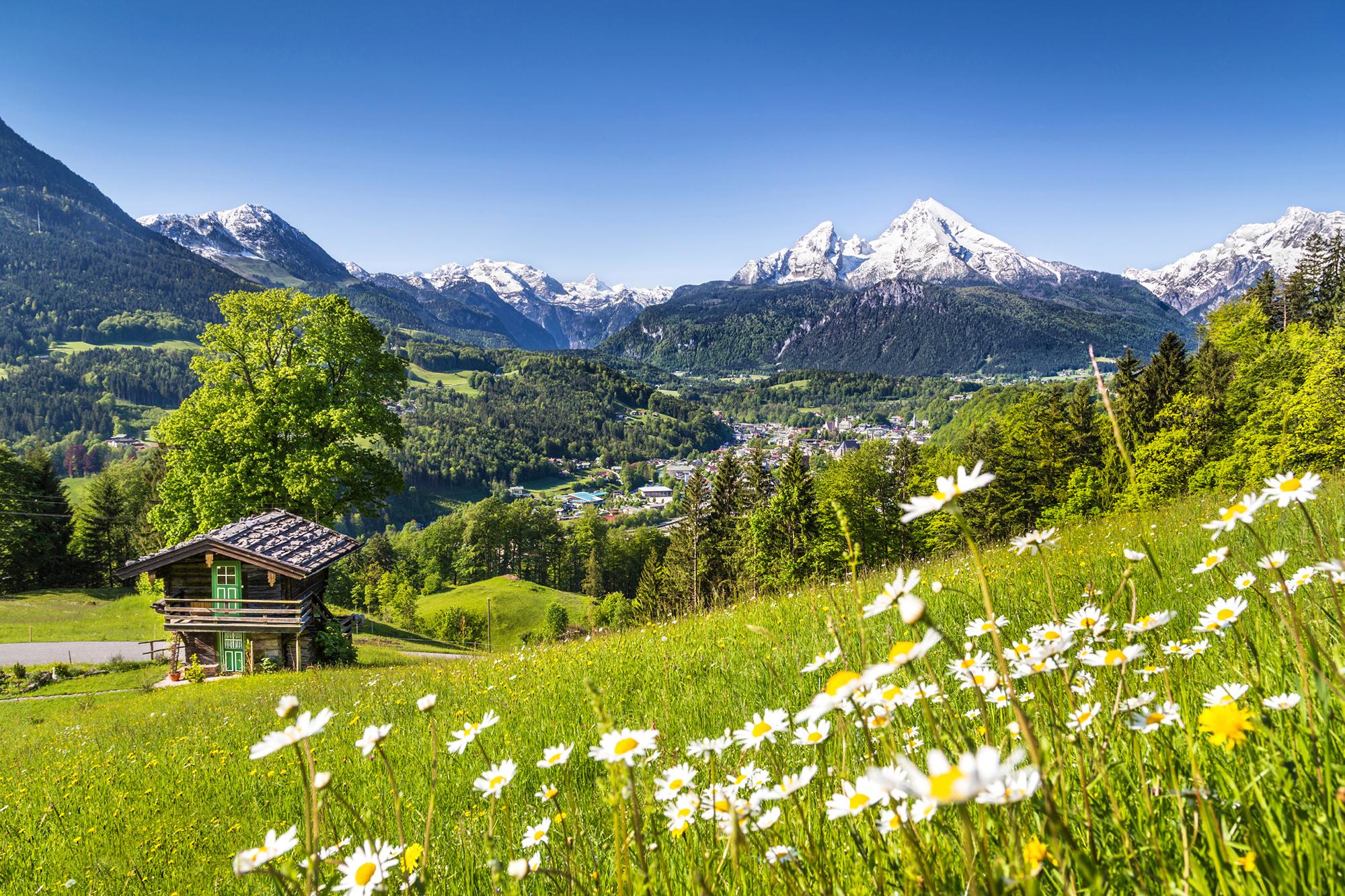 весна альпы обои
