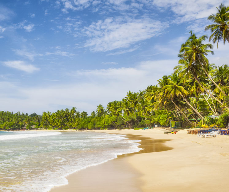 Beste Reisezeit Sri Lanka Klimainfos Und Reisetipps Tuicom
