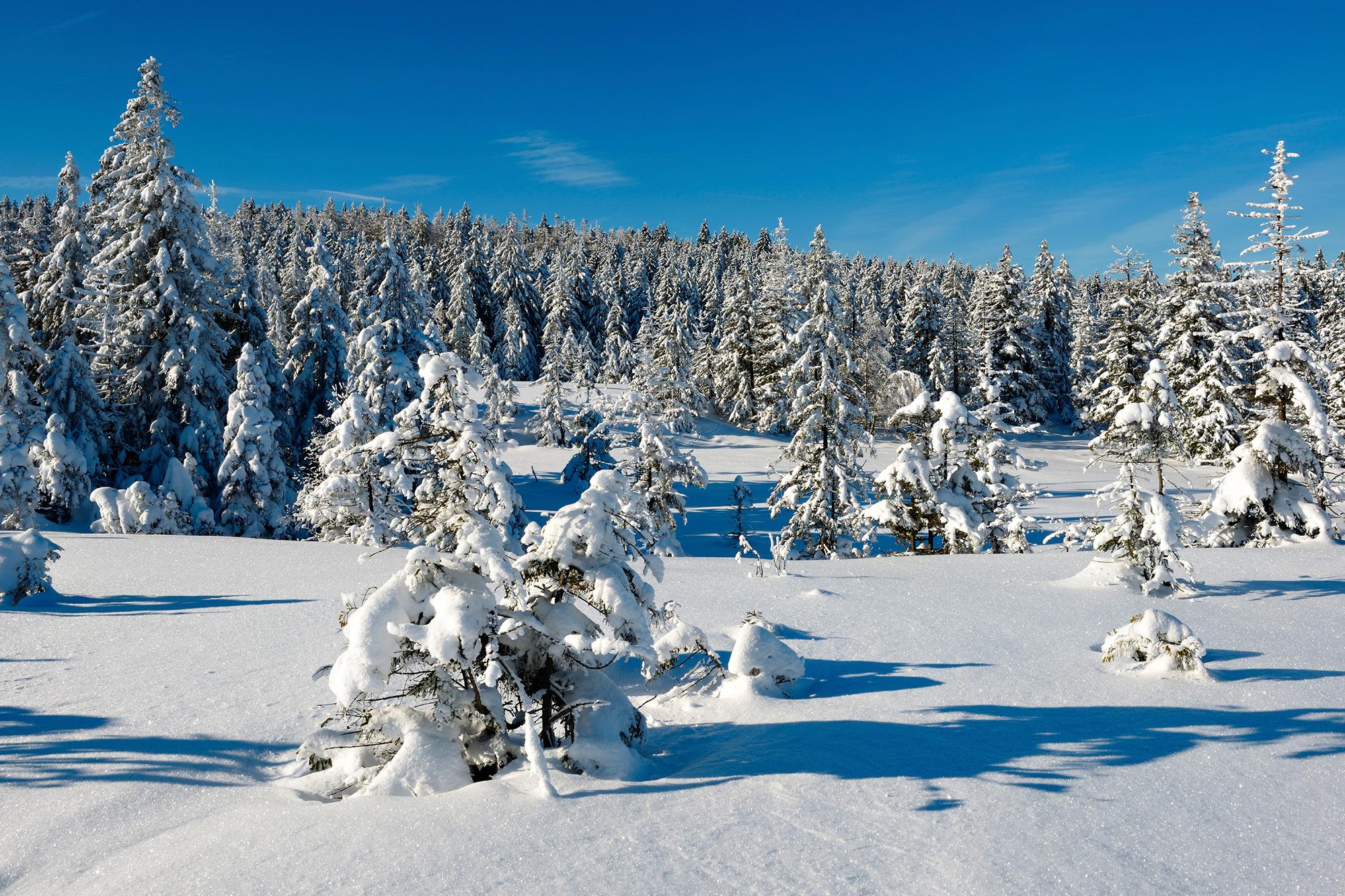Weihnachten 2019 Schnee.Weihnachtsurlaub Weihnachten Am Strand Oder In Den Bergen Tui Com