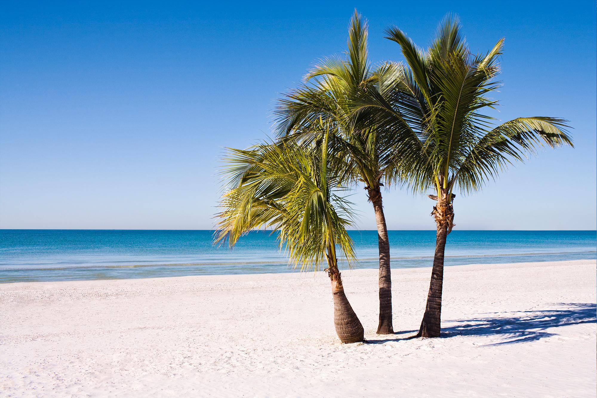 Tui Mallorca Reisen Urlaub Pauschalreisen Mit Tui