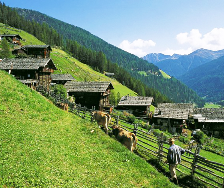 Hotels Sudtirol Urlaub Im Wanderparadies Tui Com