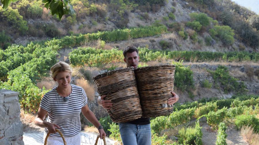 Jetzt muss die Ernte nur noch zum Winzer gebracht werden, damit der Wein gekeltert werden kann