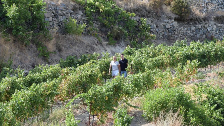 Annica und Jo bei der Weinlese auf dem Weingut Tsiakkas