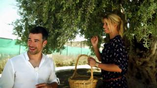 Annica, Jo und die Früchte des Ölbaums: Was ein Esel mit Olivenöl zu tun hat