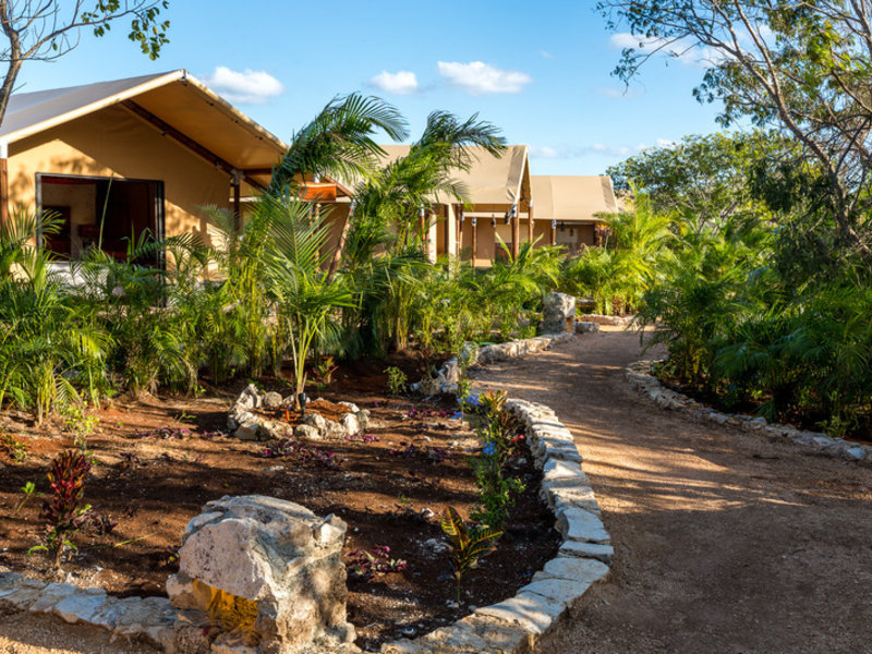 Mexiko, Serenity Luxury Tented Camp By Xperience Hotels vom 2021-04-20 bis 2021-04-23 für 117 EUR p.P.
